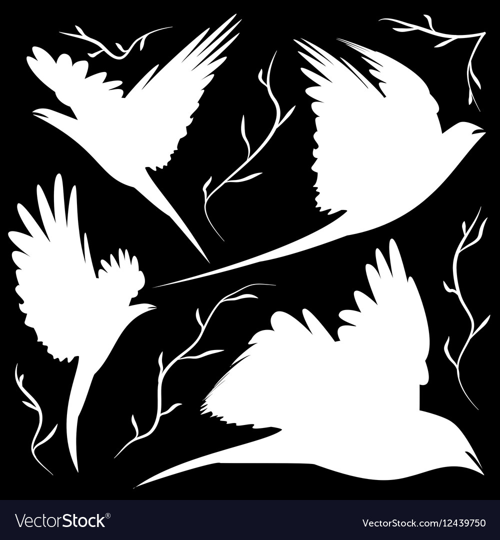 Bird silhouettes cut-out