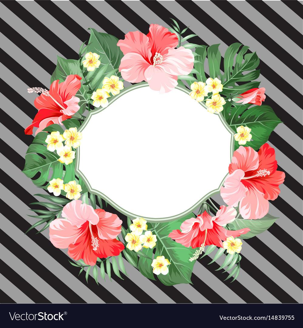 Summer tropical card
