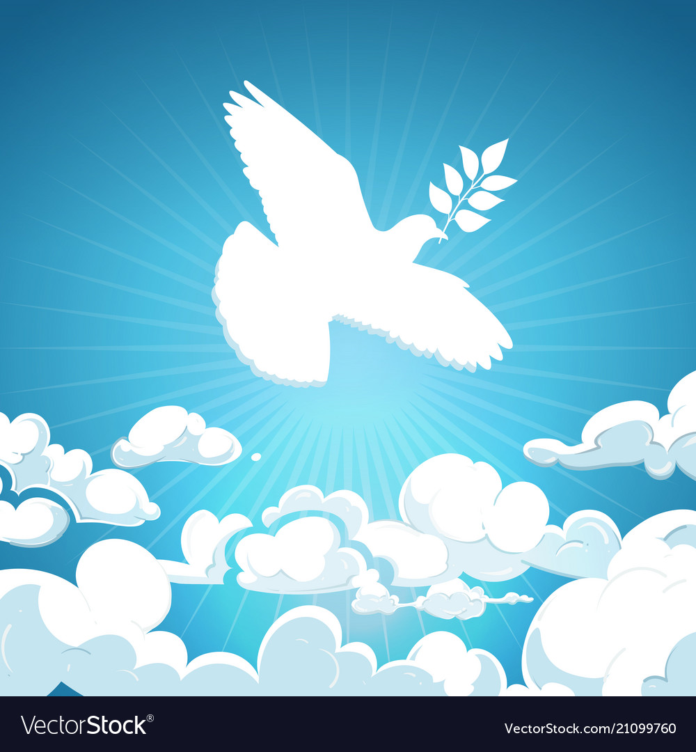 Dove of peace flying in the sky white pigeon with