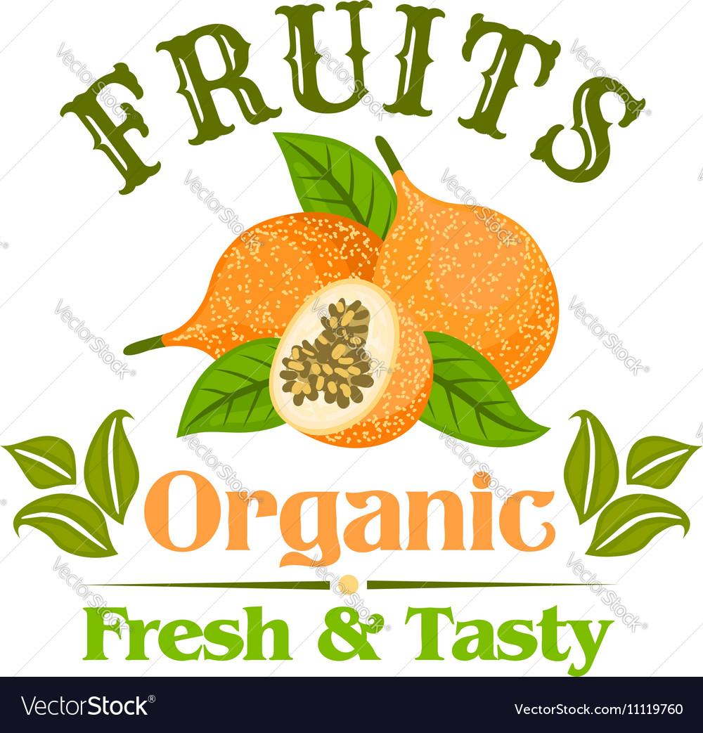 Exotic yellow passion fruit cartoon badge