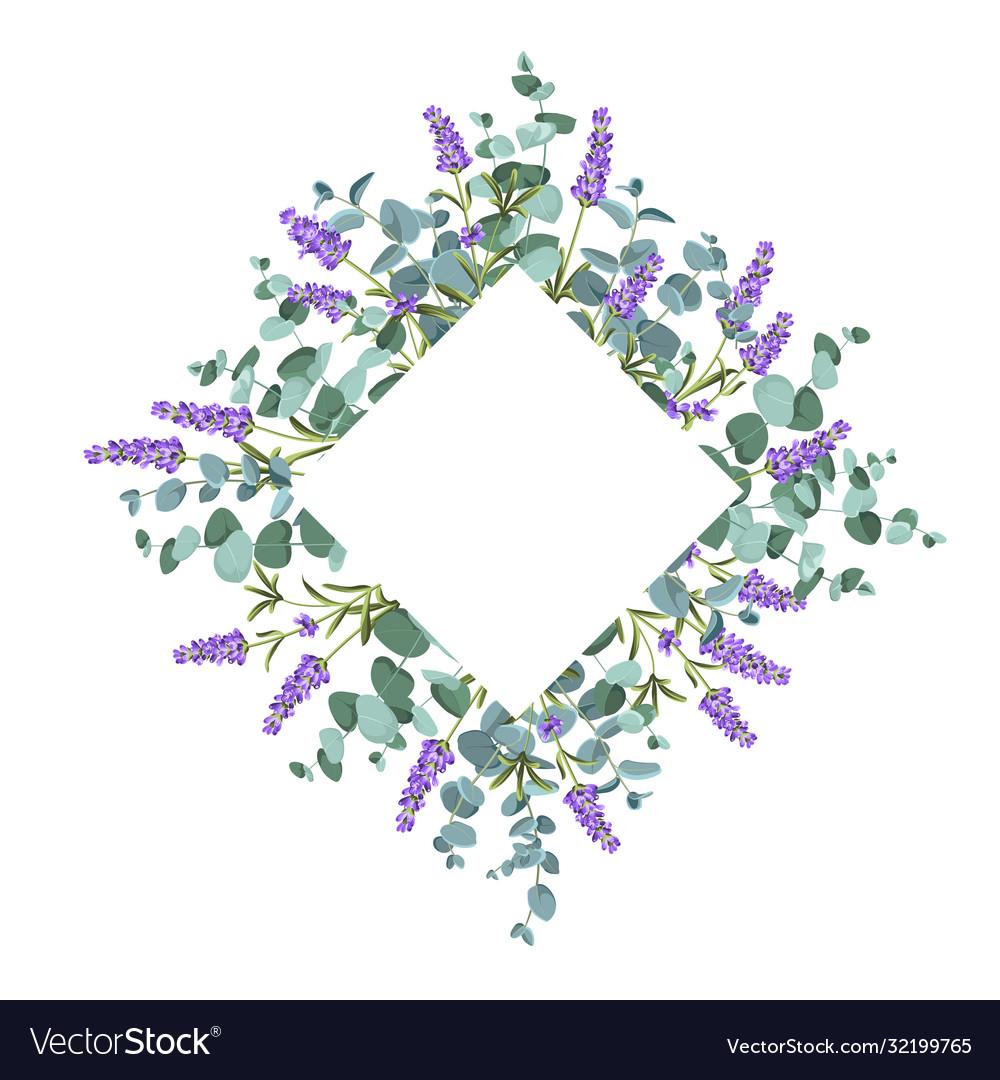 Eucaliptus and lavender elements design template