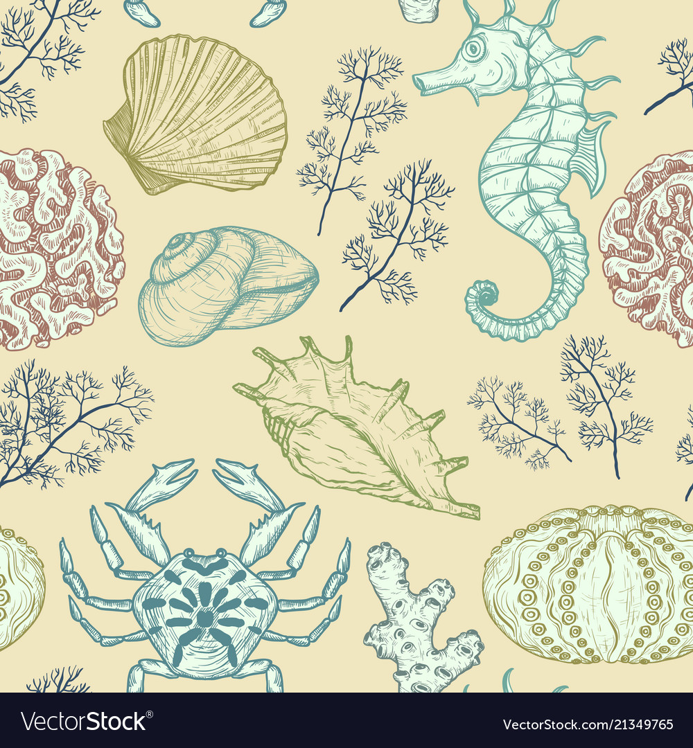 Seamless pattern with sea shells corals sealife