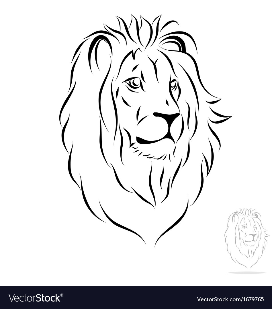морда льва картинка контуром
