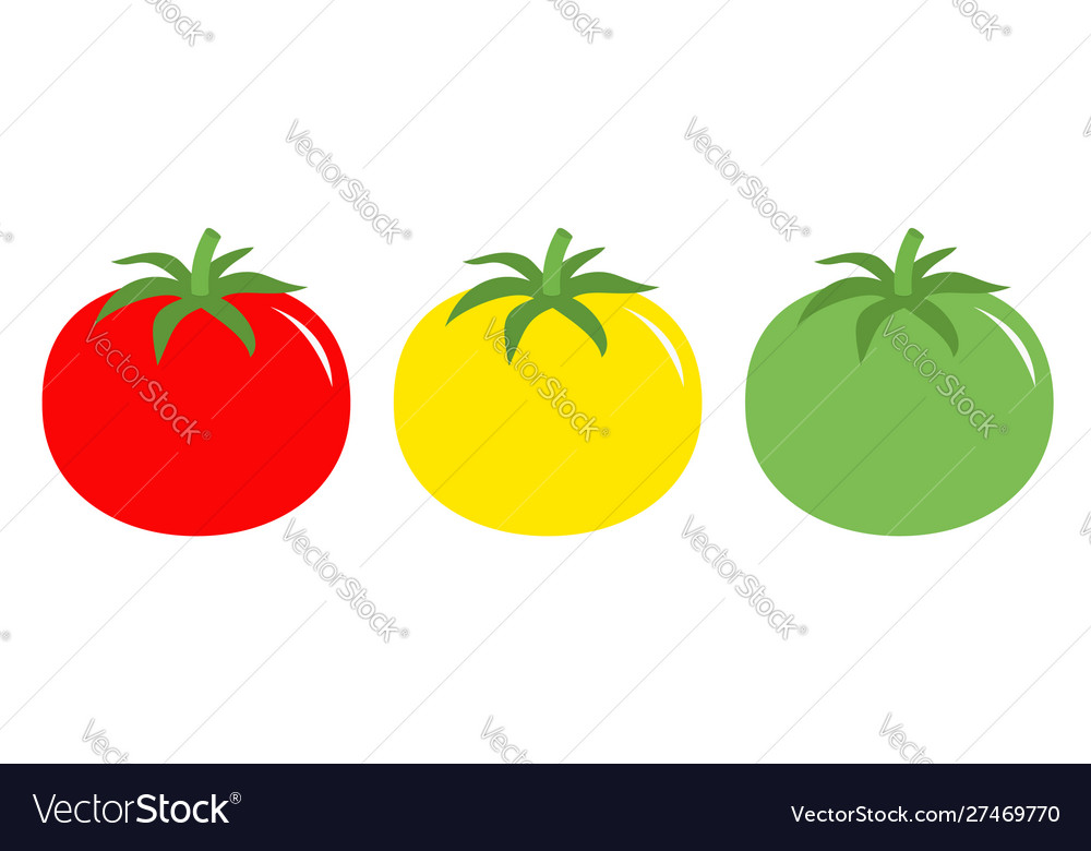 Tomato leaves icon set line red yellow green