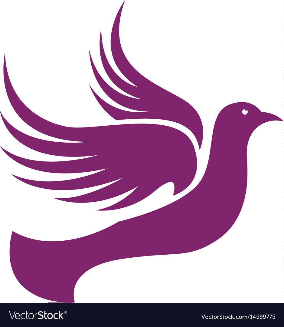 bird wing dove logo template royalty free vector image