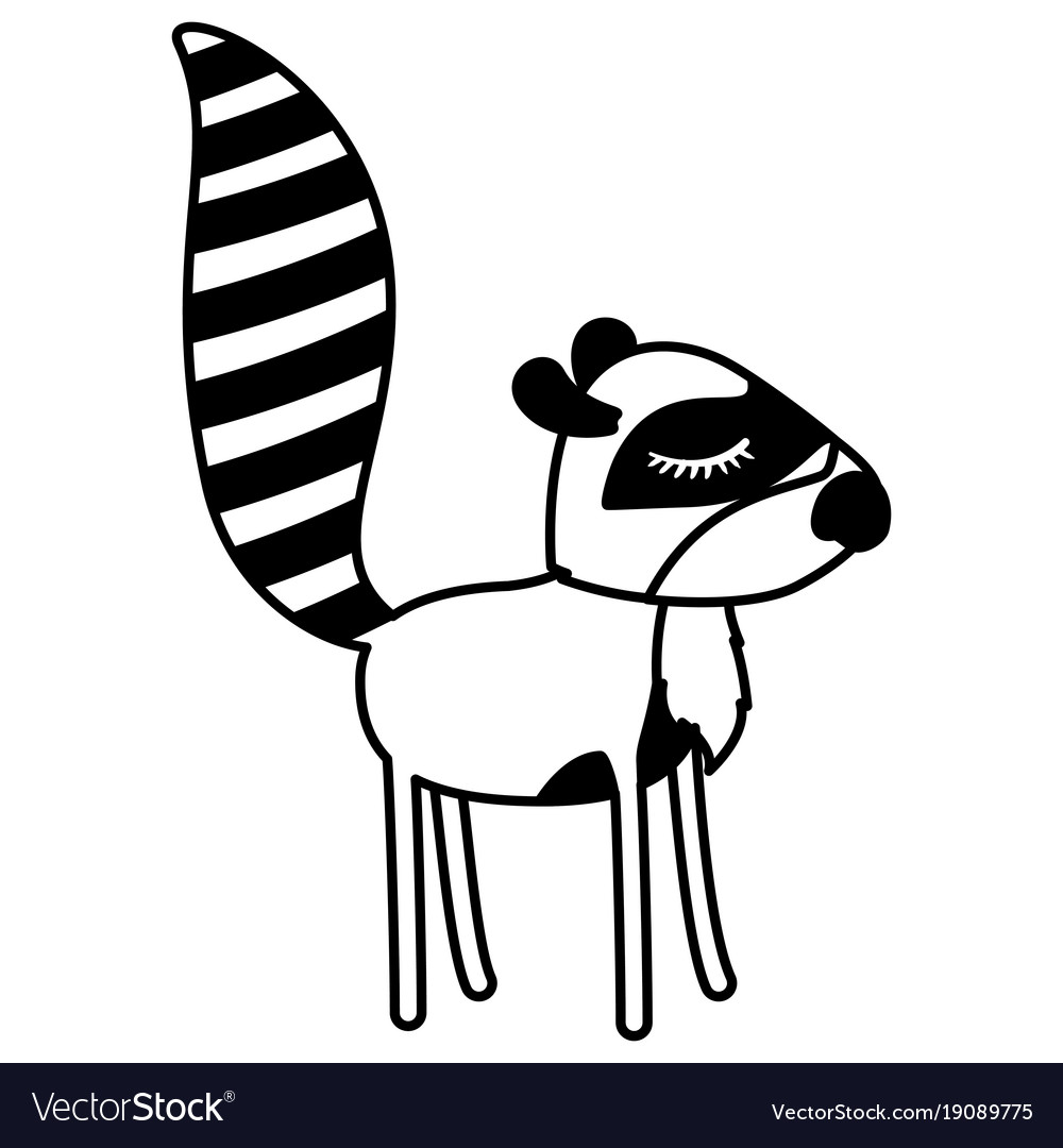 Female Raccoon Cartoon With Closed Eyes Expression