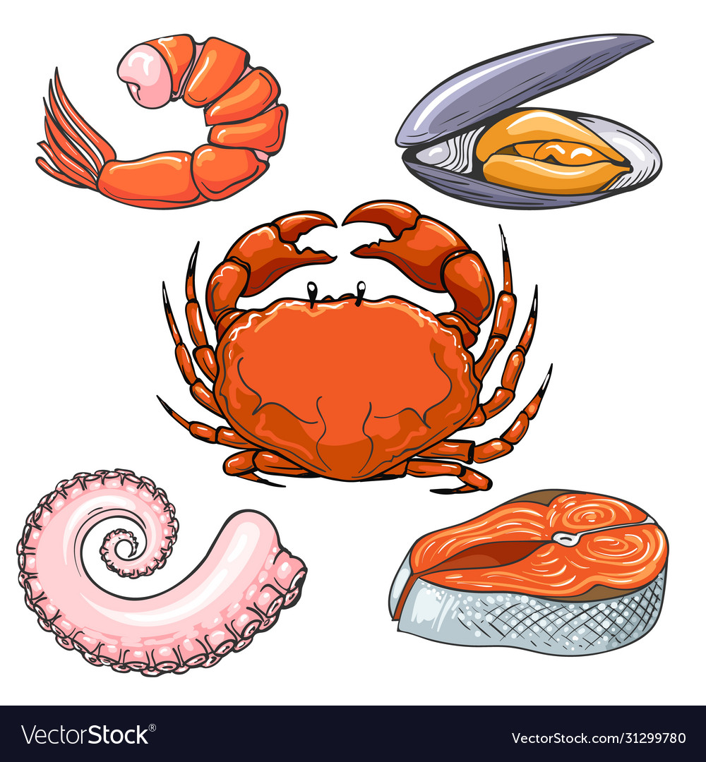 Hand drawn seafood sketch