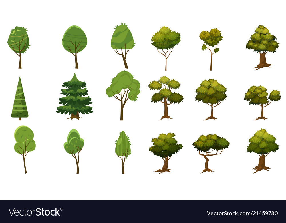 Set of trees of various kinds cartoon style and