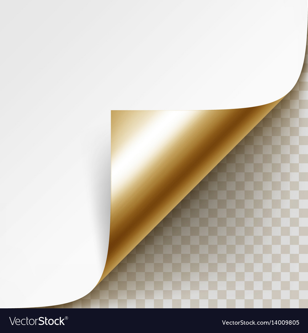 Corner of white paper with shadow isolated vector image