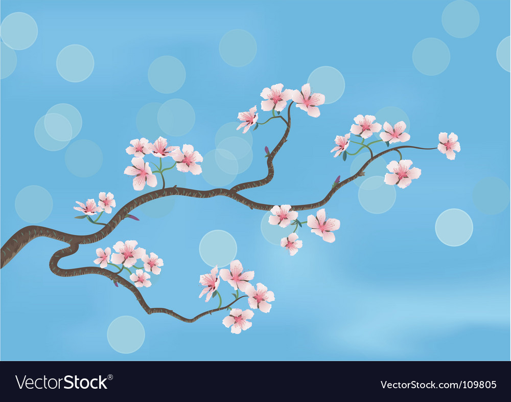 Flowered sacra