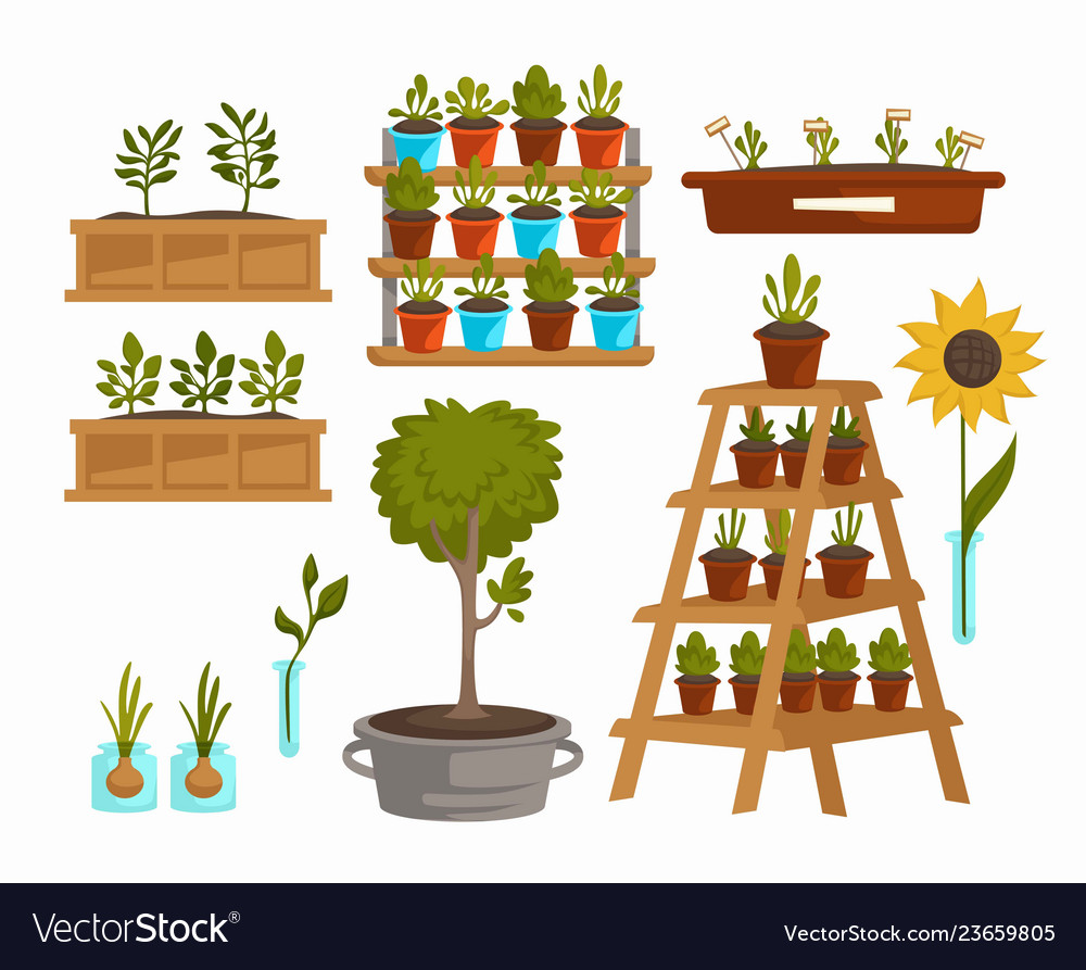 Planting vegetables and trees plants and flowers