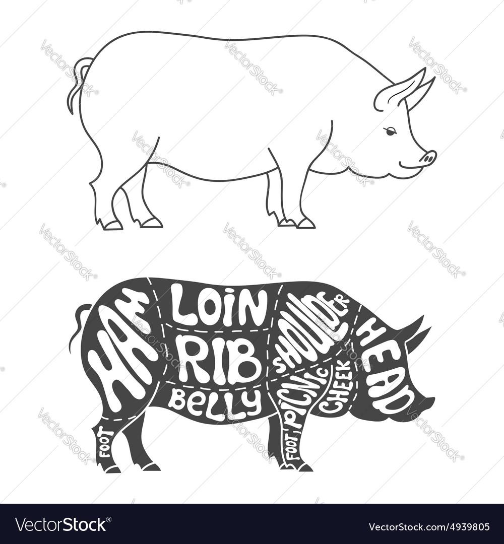 Pork Cuts Diagram Royalty Free Vector Image Vectorstock Chicken Stock