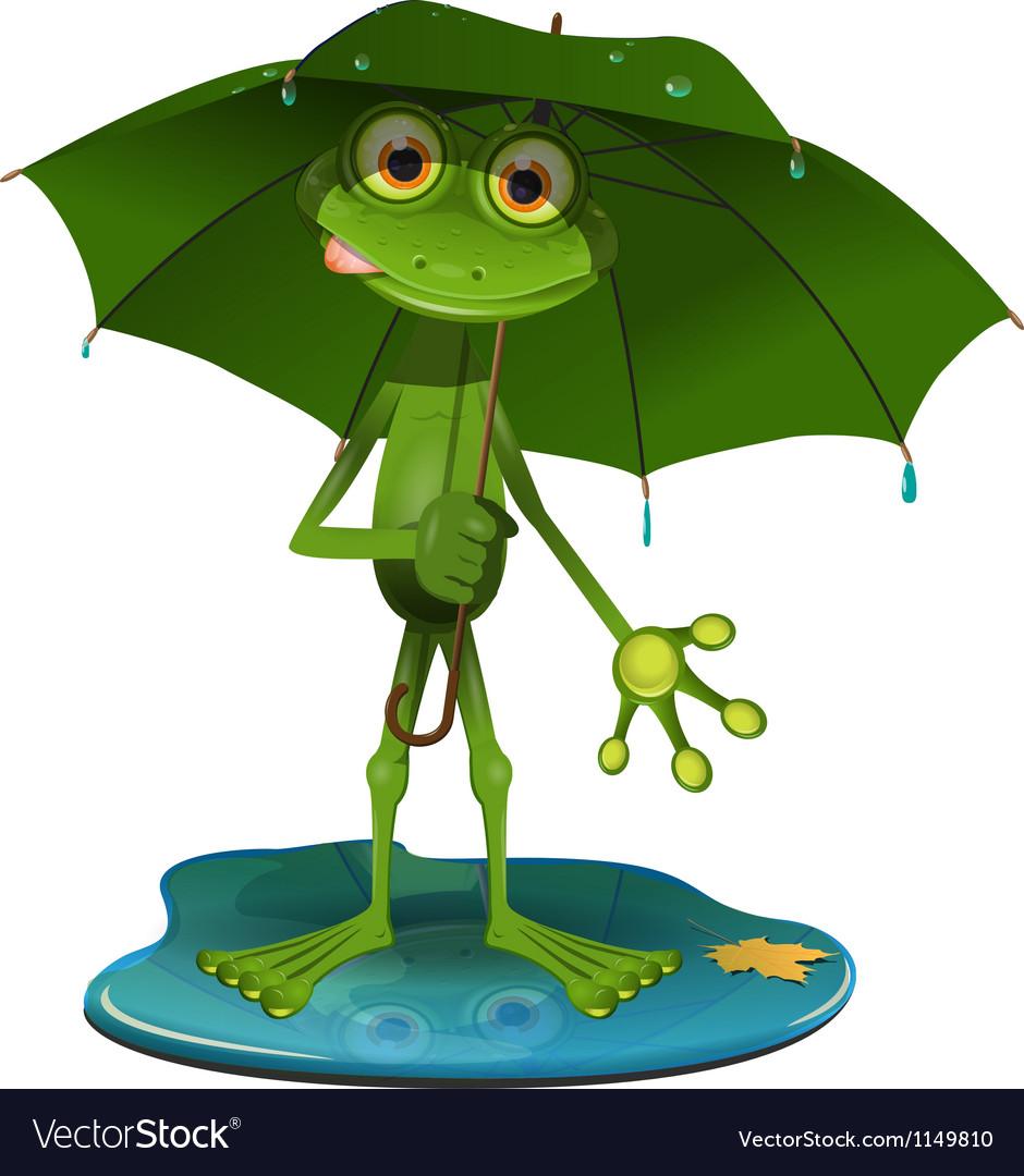 Frog with a green umbrella vector image