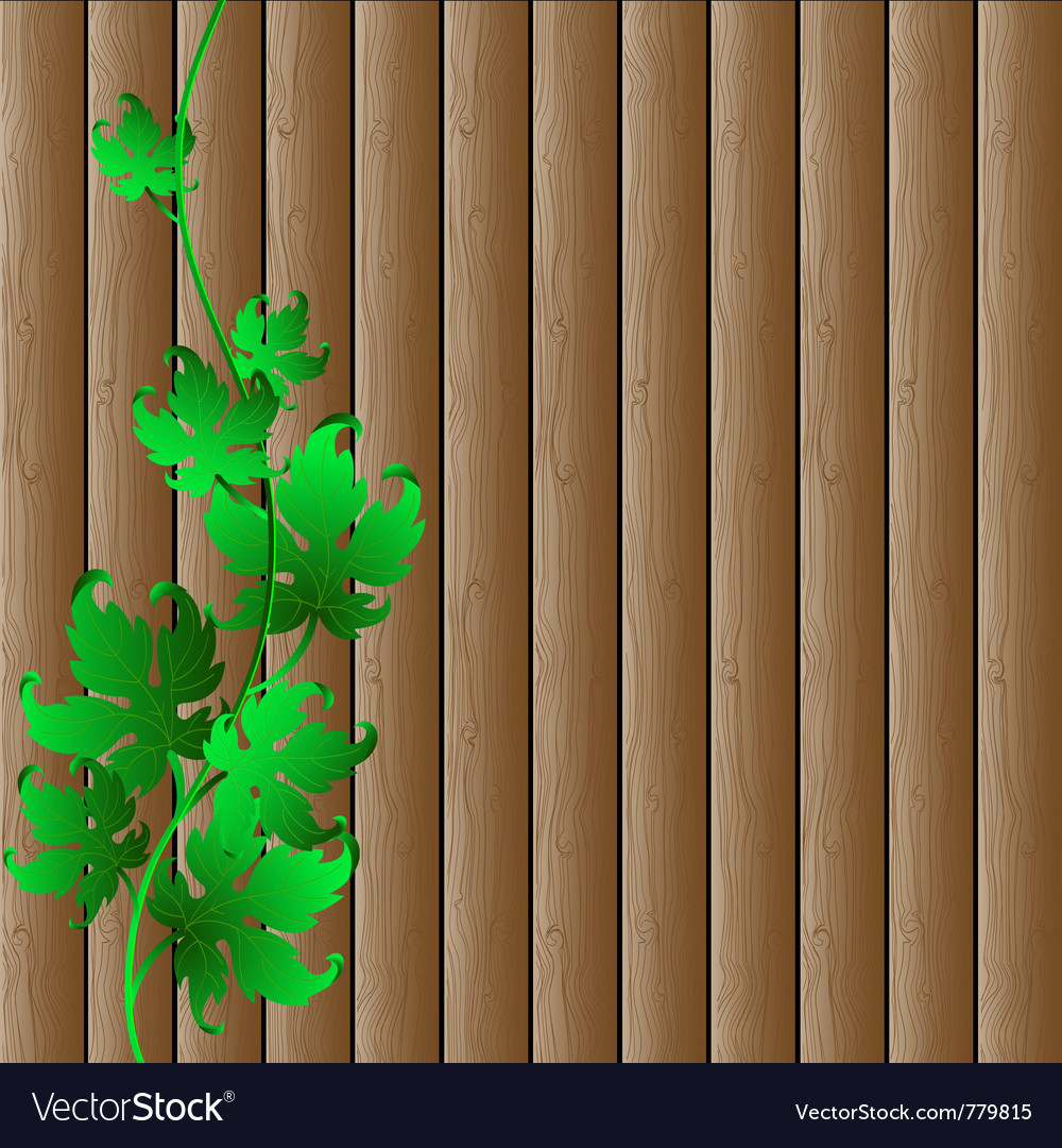 Wooden background vector image