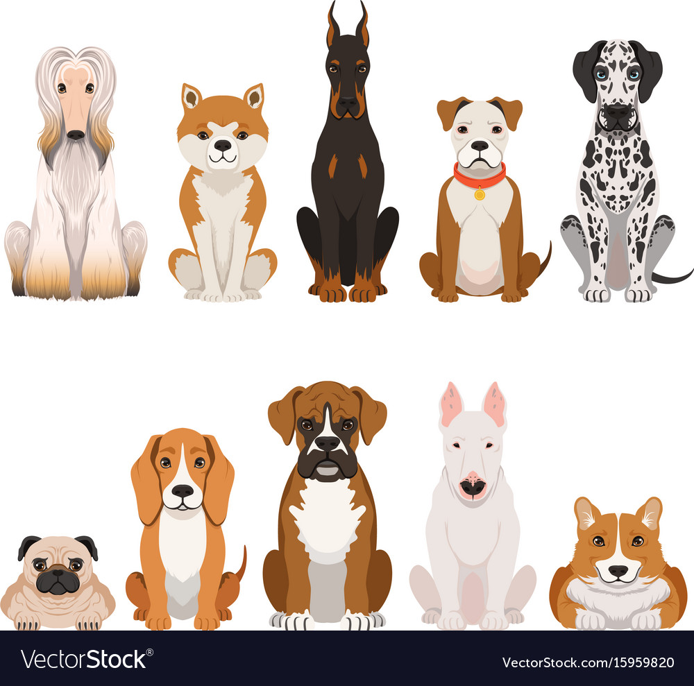 Funny dogs in cartoon style