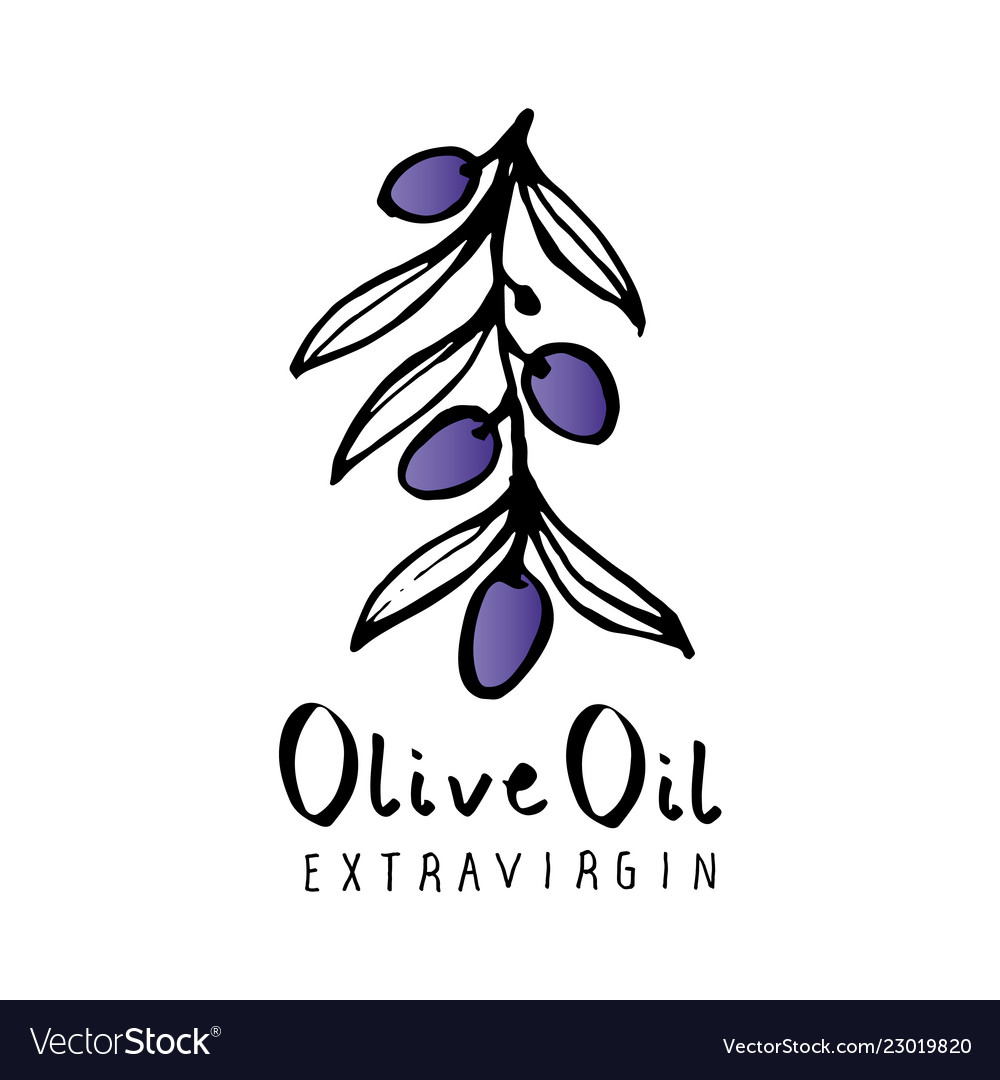 Olive branch with olive leaves hand drawn and