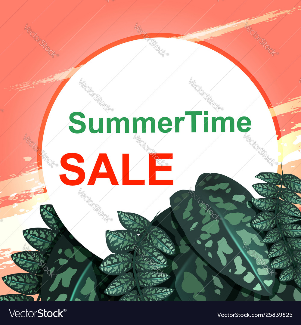 Summer sale concept pink sunset and green leaves
