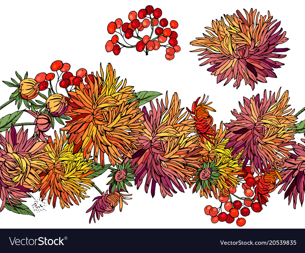 Endless Pattern Brush With Autumn Flowers Aster Vector Image