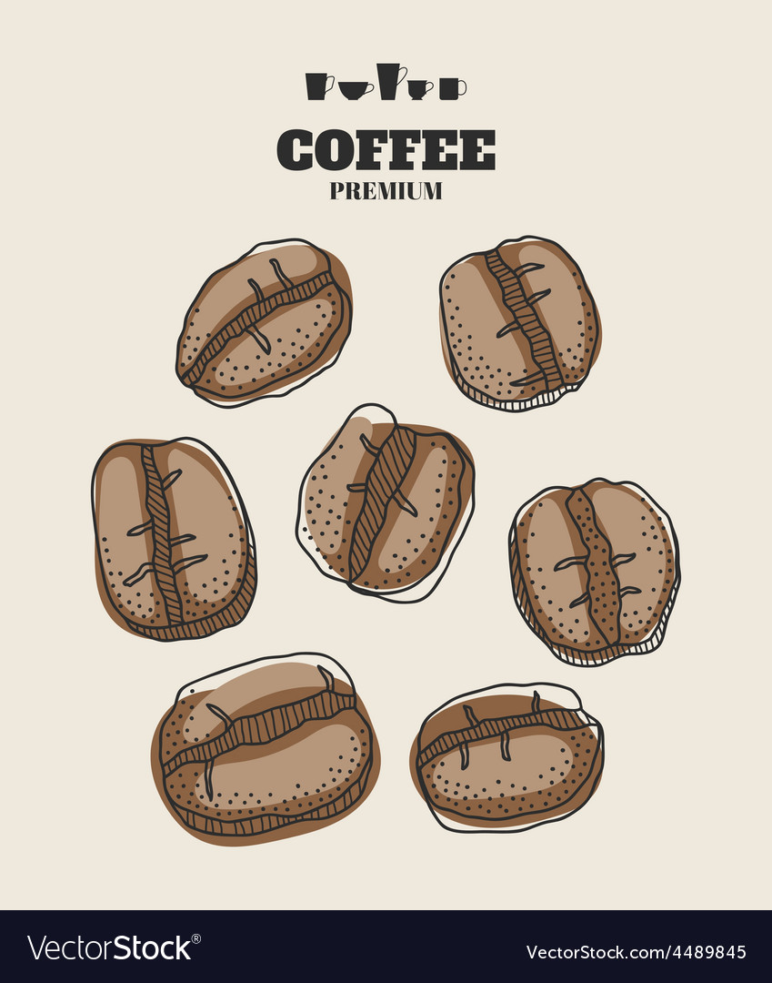 Set of hand drawn coffee beans for design