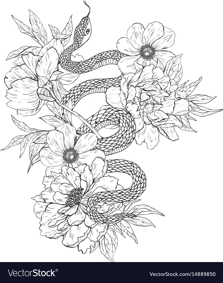 Snakes and flowers tattoo art coloring books Vector Image