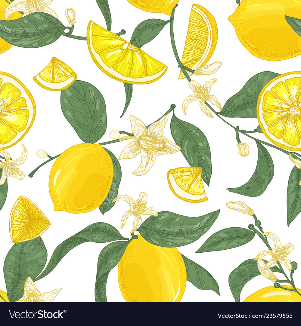 Seamless pattern with lemons whole and cut into