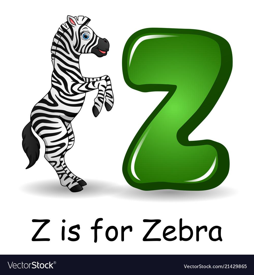 Animals alphabet z is for zebra
