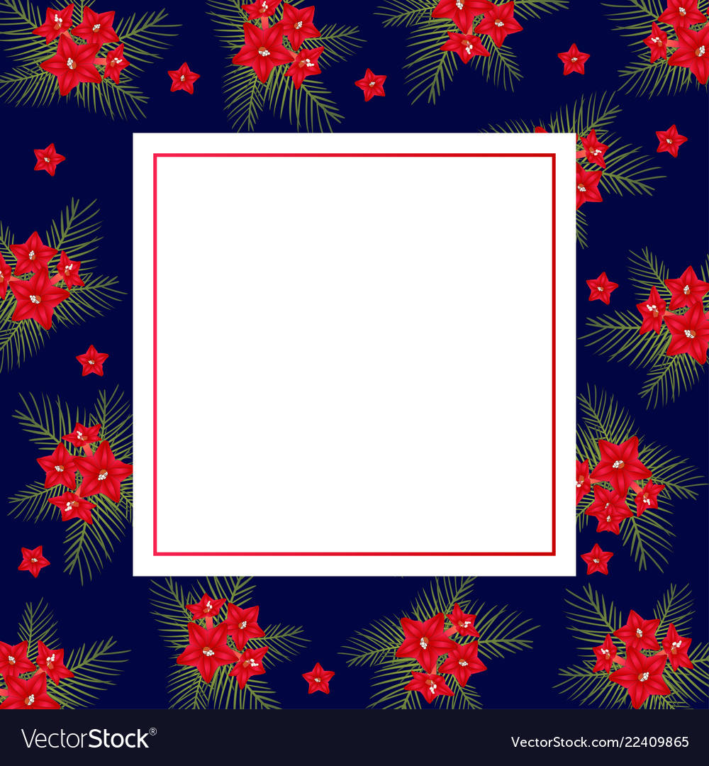Cypress vine flower on christmas blue banner card