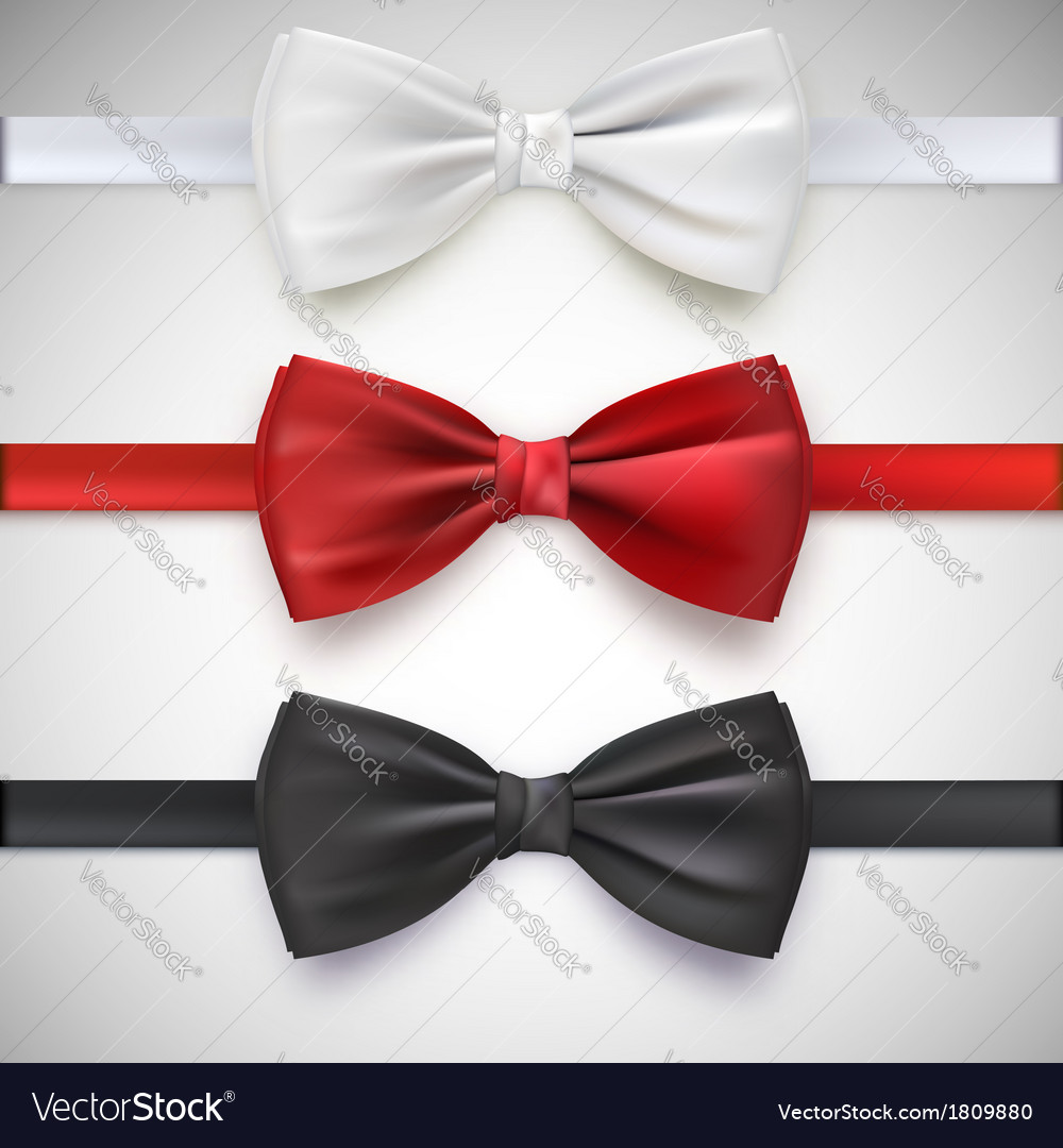 Realistic white black and red bow tie vector image