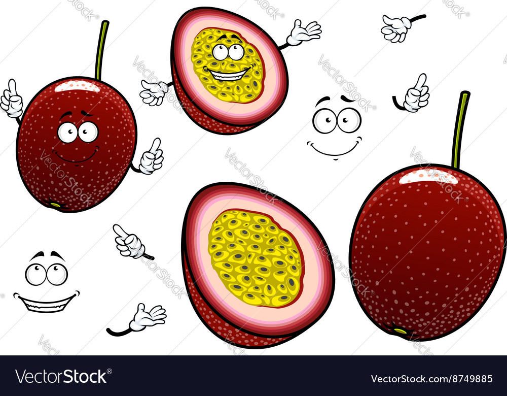 South american cartoon exotic passion fruits