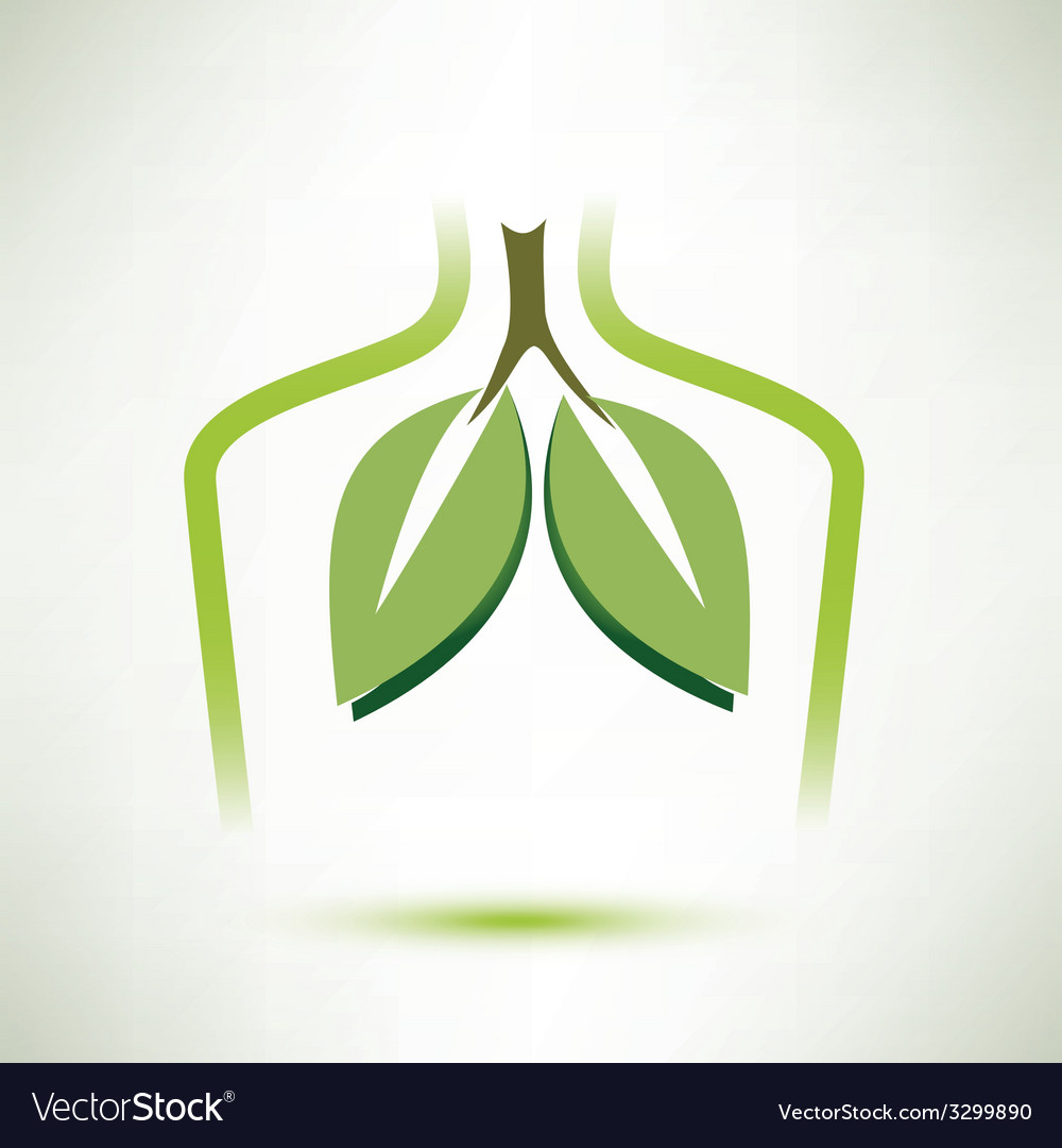 Lungs isolated symbol stylized icon vector image