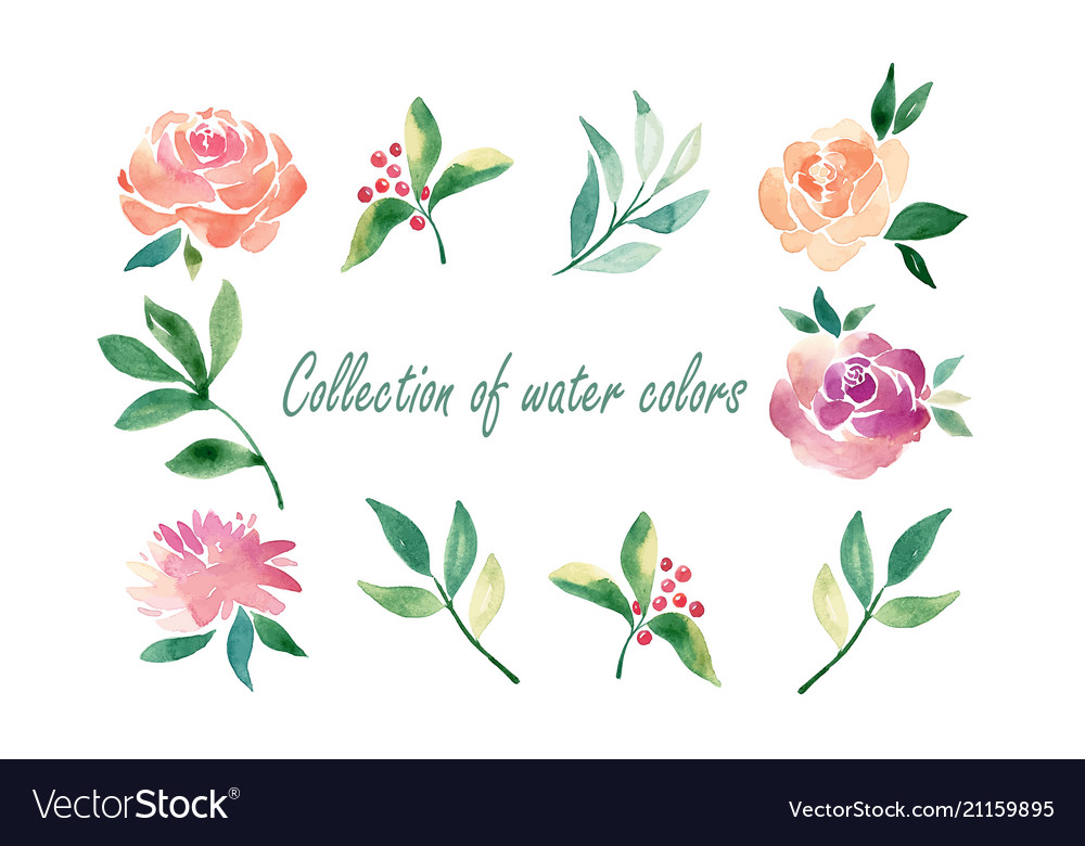 Floral set colorful floral collection with