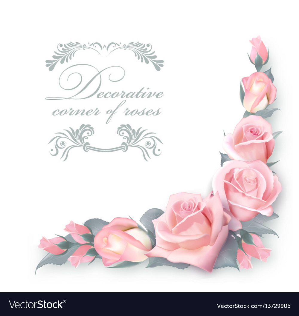 Corner Background With Pink Roses And Green Vector Image