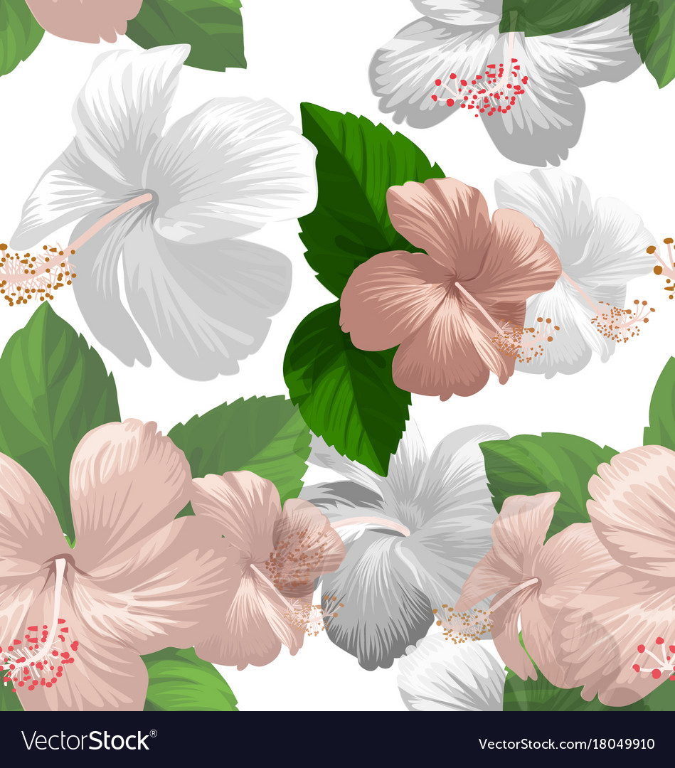 Hibicus flowers pattern