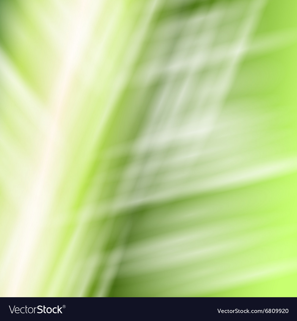 Abstract white green background vector image