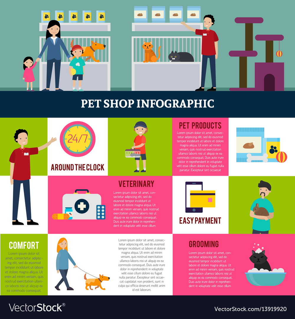 Colorful pet shop infographic concept
