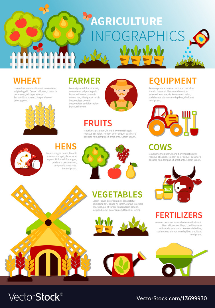 Agriculture farm infographic poster