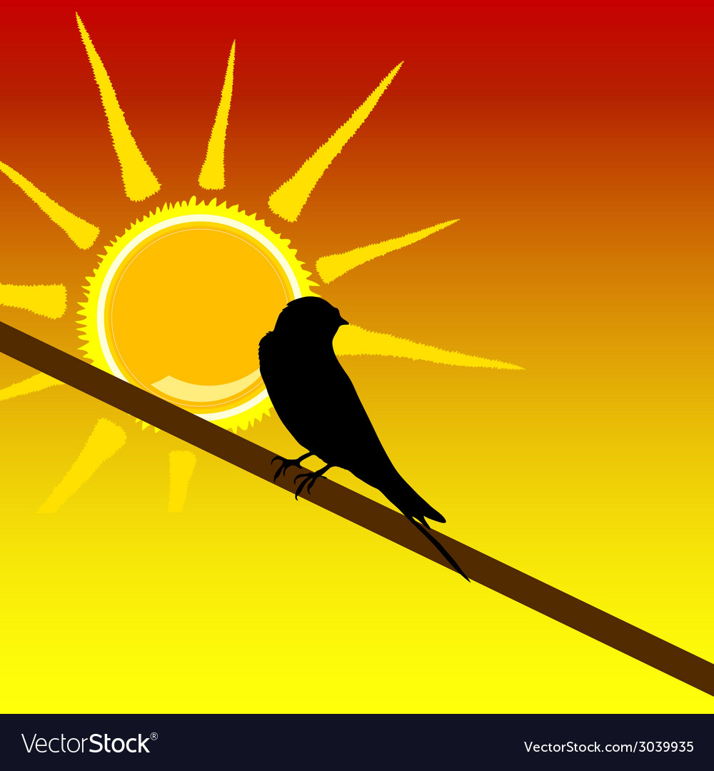 Sparrow on the branch art color vector image