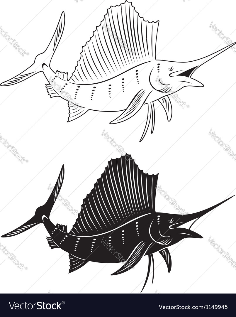 Fish marlin vector image