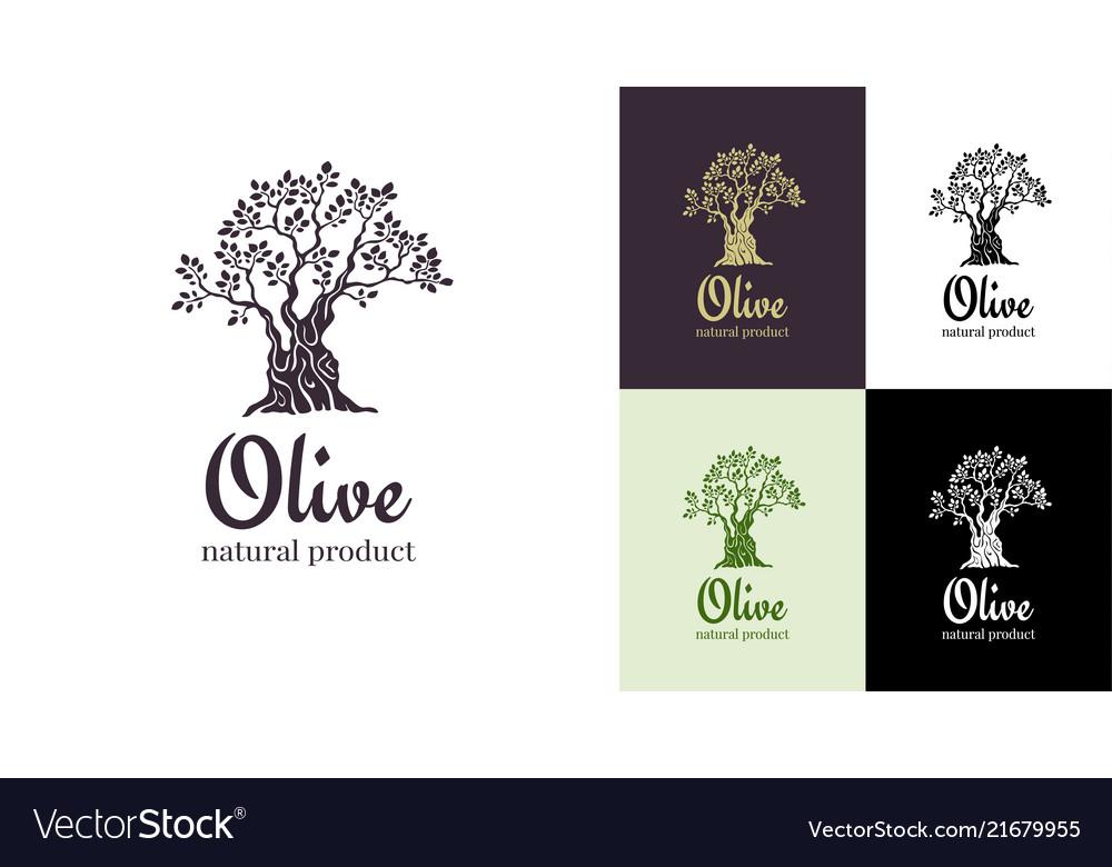 Olive tree logo design template for oil