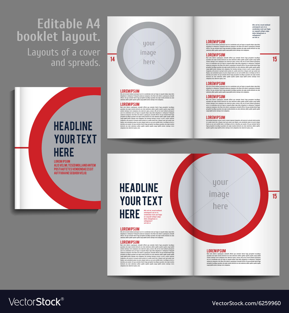 a4 booklet layout design template with cover vector image
