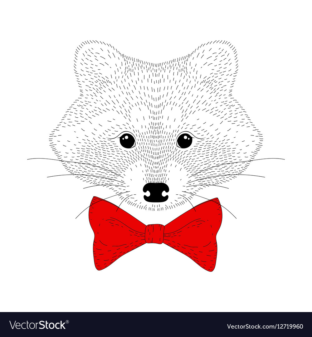 Cute cheerful fashion raccoon portrait Hand drawn vector image