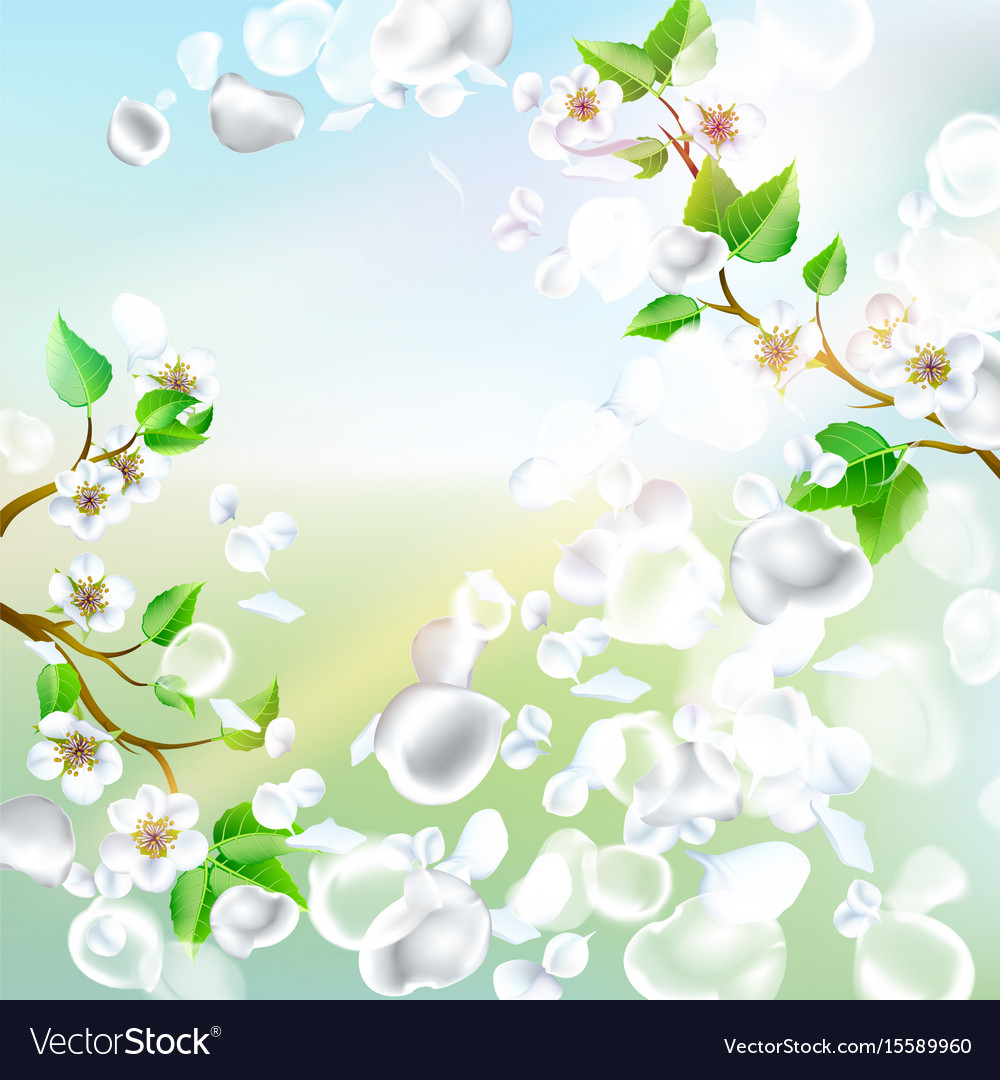 Spring background with falling petals