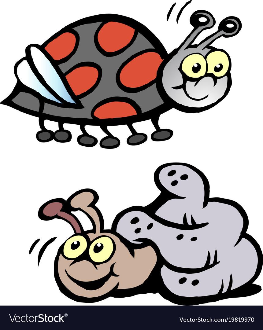 Cartoon of a ladybug and a snail