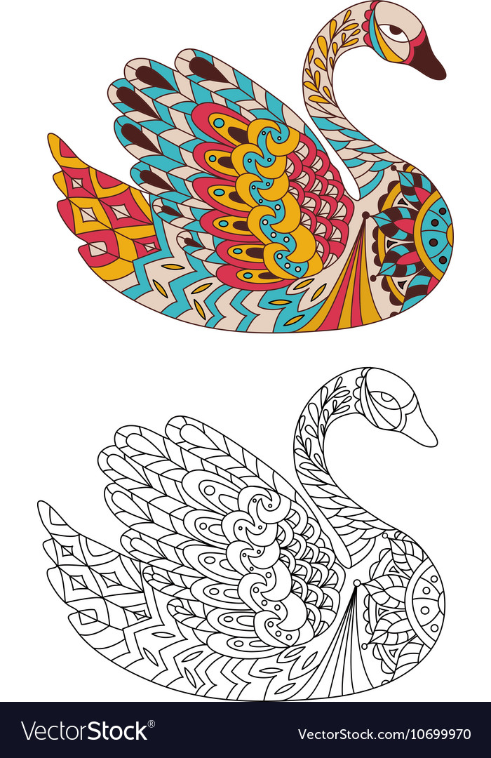 Printable Coloring Book Page For Adults Swan Vector Image