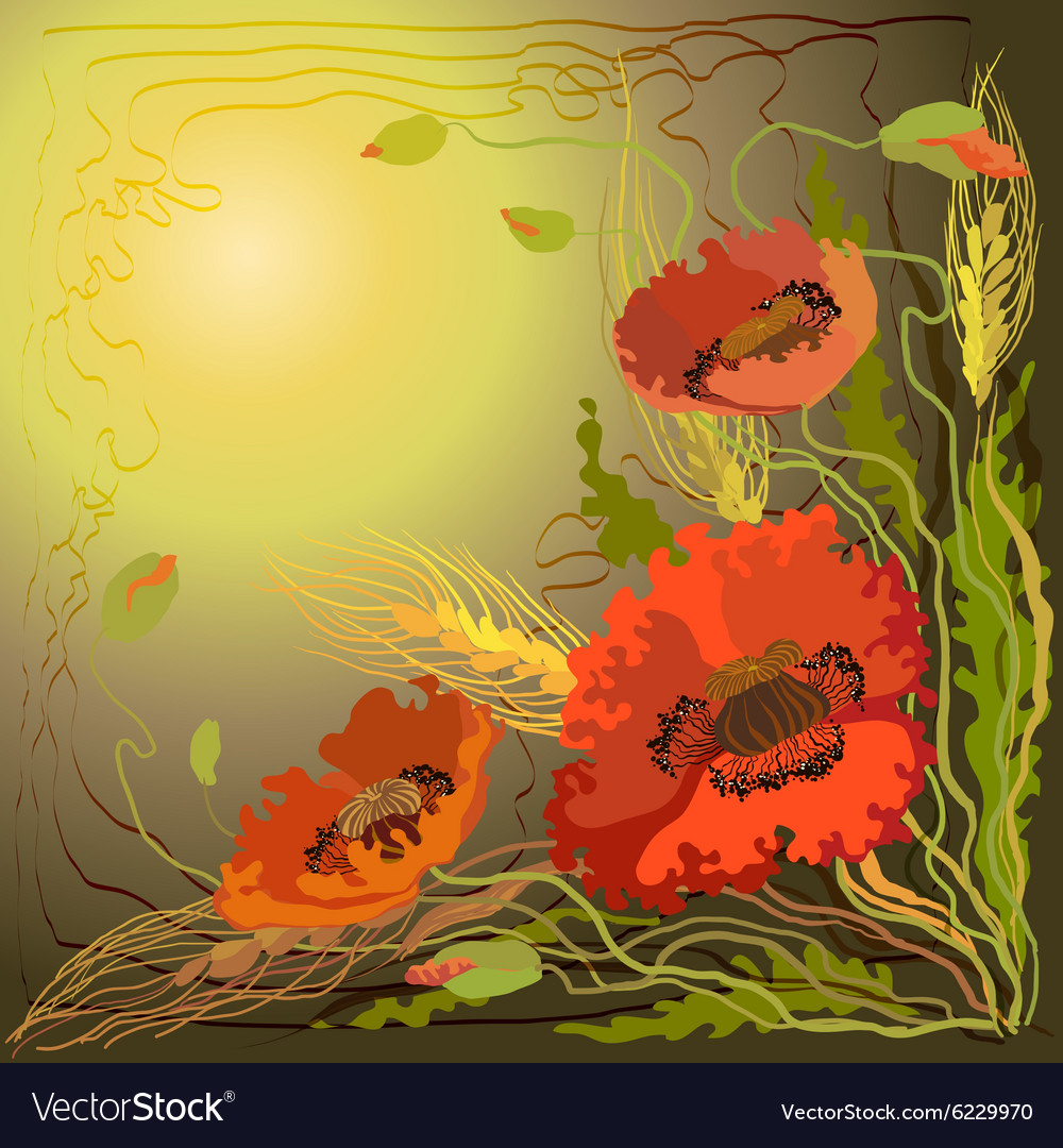 Red And Orange Poppy Flowers And Spike Lets Of Vector Image
