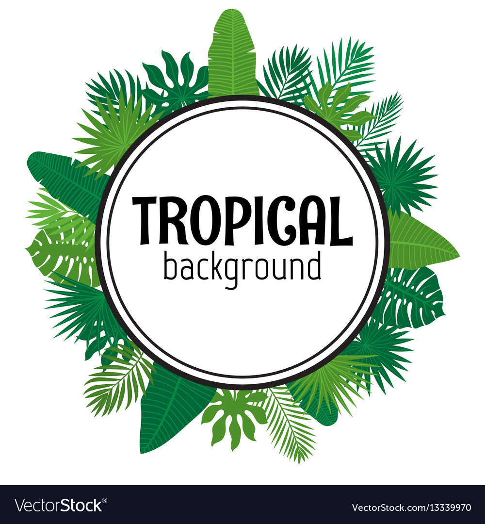Tropical leaves background summer design