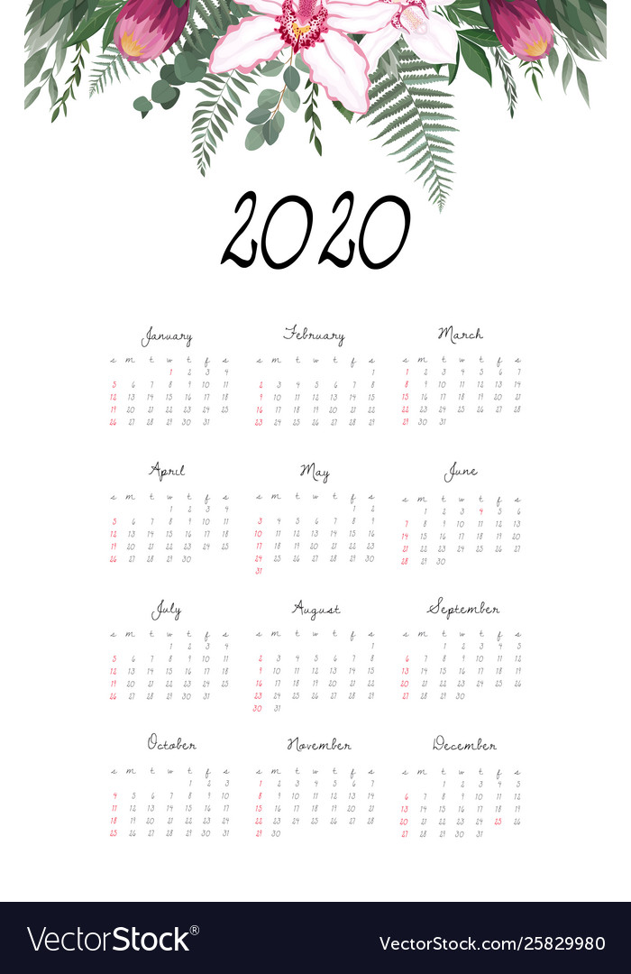 2020 12 Month Calendar Calendar 2020 template 12 months include holiday Vector Image