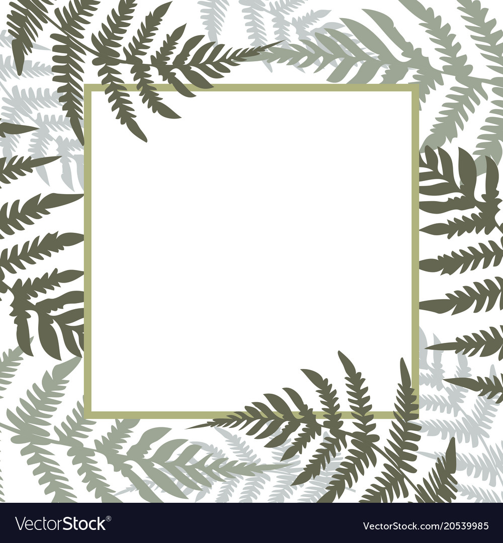 Fern square white frame green