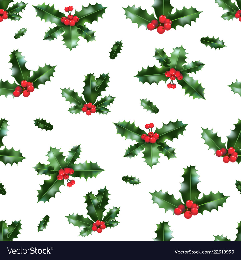 Holly isolated pattern