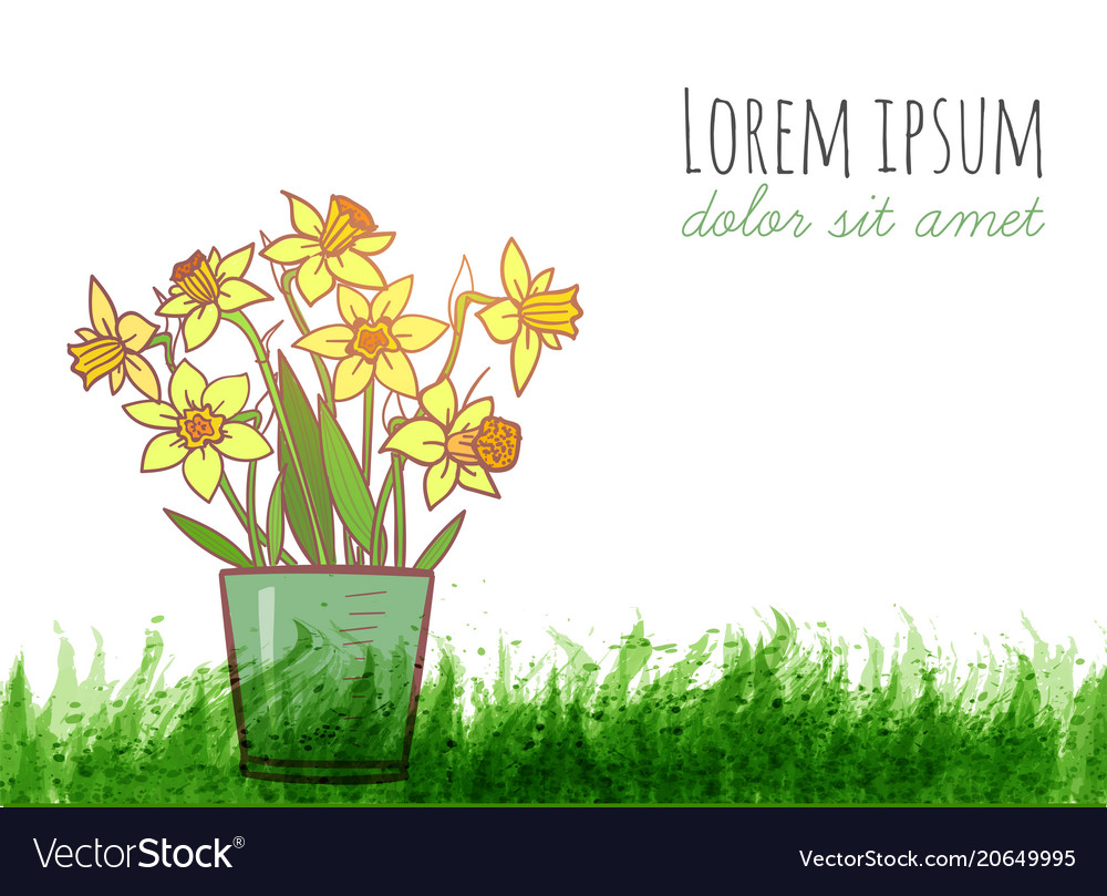 Bouquet of yellow daffodiles and green grass